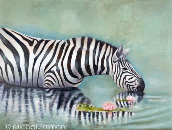 zebra-in-the-lotus-lake